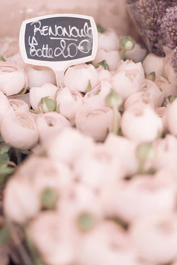 Ranunculus at Paris flower market