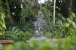 Kauai Hindu Monastery Dancing Fountain